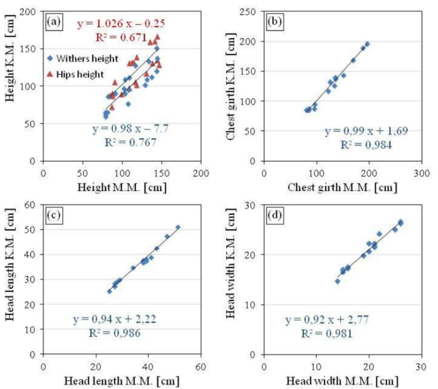 Comparación entre diferentes parámetros del cuerpo: (a) altura de cadera y cruz, (b) circunferencia del pecho, (c) longitud de la cabeza y (d) ancho de la cabeza. Las etiquetas del eje, M.M. y K.M. se refieren a la medición manual y de Kinect.